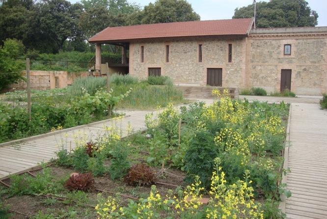 Aquest diumenge el Parc de Can Solei i de Ca l'Arnús acull l'activitat participativa 'La tardor al Jardí de les Ciències'