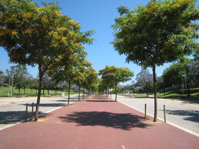 Signat el nou contracte del manteniment de 125.000 m2 de zones verdes de Badalona