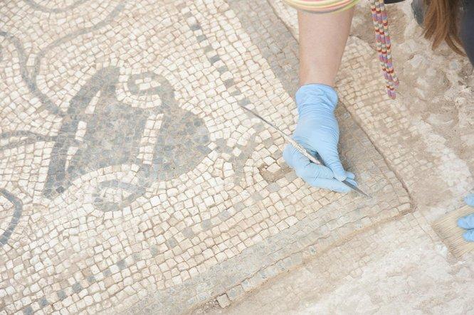 Un mosaic romà que al·ludeix al déu Bacus es podrà veure al Museu de Badalona a partir d'aquest dijous 28 de març