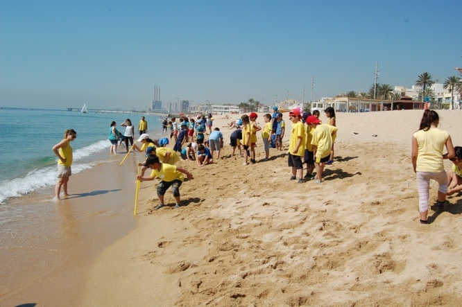 El Badaplatja clou les activitats del Badasport d'aquest curs 2018-2019 que enguany celebra els 20 anys de la seva creació