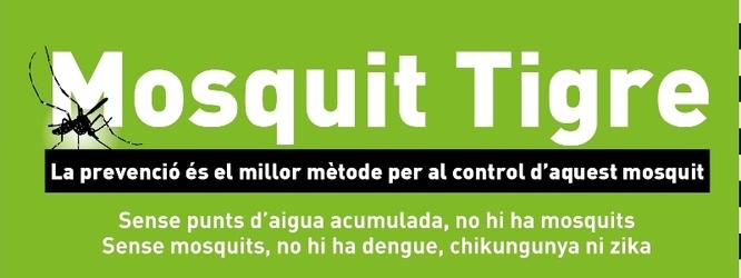 L'Ajuntament inicia la campanya informativa sobre el mosquit tigre