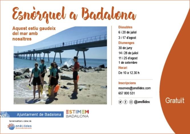 L'Ajuntament ofereix aquest estiu sortides guiades d'esnòrquel per donar a conèixer la riquesa natural de les platges de Badalona