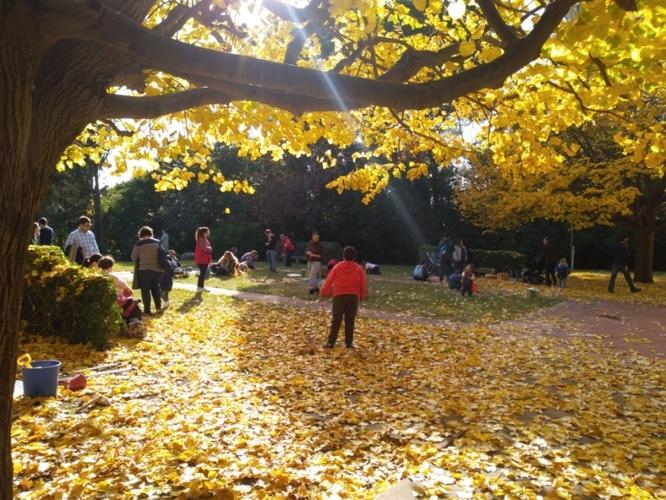 La Jugatecambiental proposa per aquest diumenge 8 de desembre descobrir els vessants poètics i romàntics del parc de Can Solei i de Ca l'Arnús