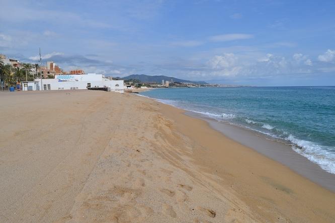 A partir d'avui, coincidint amb l'acabament de la temporada de bany, ja es podrà passejar amb els animals domèstics a les platges de Badalona