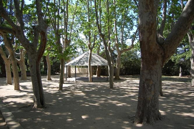 Aquest diumenge taller sobre La vegetació singular i la biodiversitat del parc de Can Solei i de Ca l'Arnús de Badalona