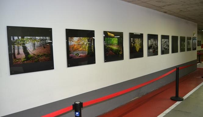 """L'aparcament de l'edifici municipal El Viver acull l'exposició fotogràfica """"6 Miradas"""""""