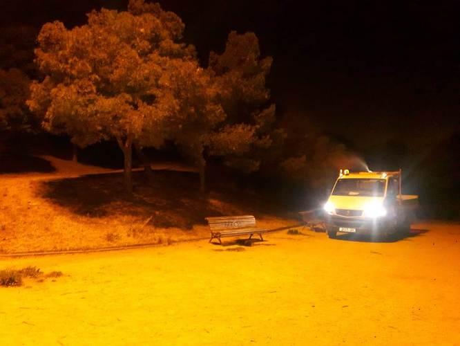 L'Ajuntament de Badalona combat la plaga de la processionària del pi