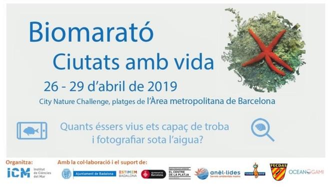 Dissabte 6 d'abril es presenta, al port de Badalona, la Biomarató-City Nature Challenge 2019 en el marc de la Fira Inicia't