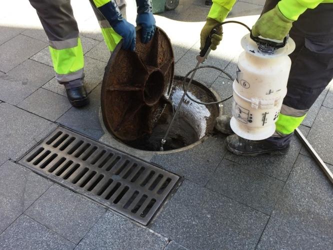 L'Ajuntament de Badalona inicia la campanya de control de plagues en el clavegueram de la ciutat