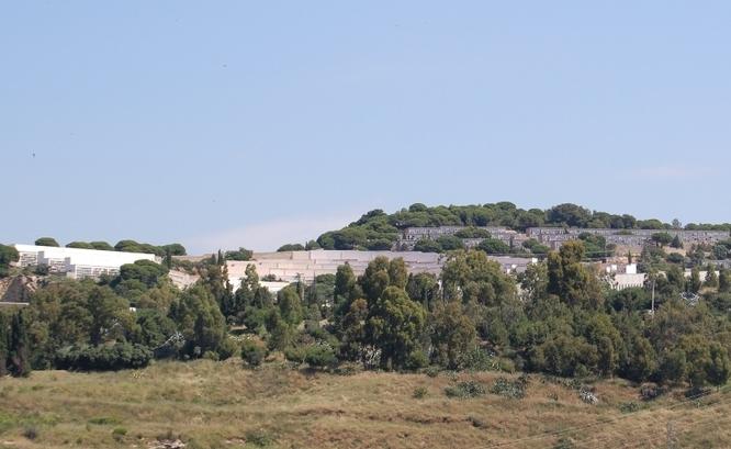 Es reinicia el servei de neteja de les àrees verdes del cementiri de Sant Pere