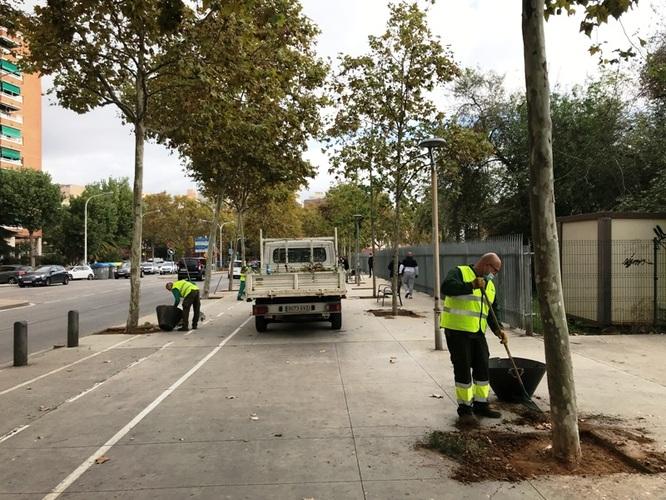 L'Ajuntament netejarà les males herbes i la brutícia de 30.000 escocells de la ciutat abans d'acabar l'any 2020