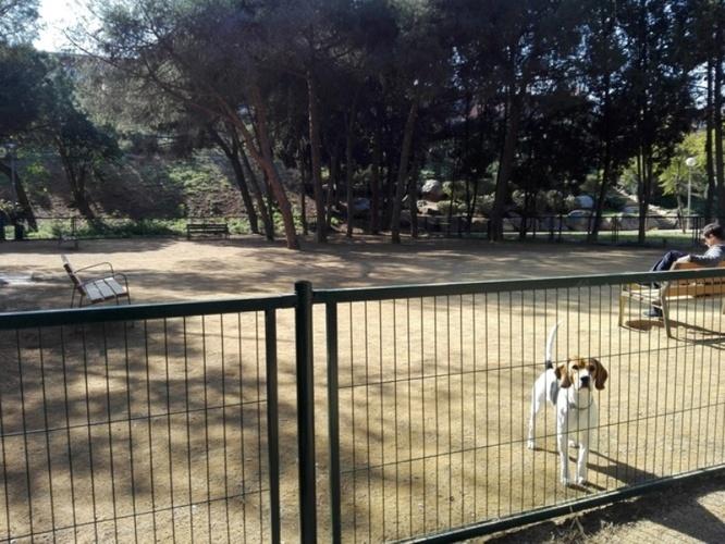 Les vint-i-una àrees de gossos de Badalona es desinfectaran les nits del 15 i del 16 de desembre