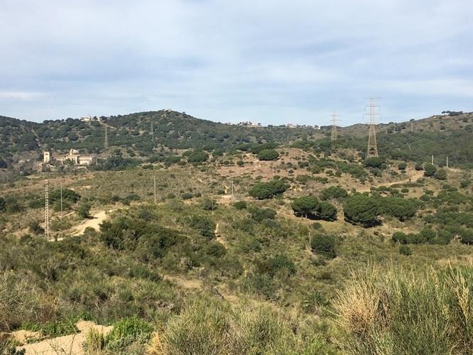 L'Ajuntament de Badalona demana a la Generalitat que revisi la llicència de gestió forestal atorgada a la propietat de la finca Can Mas