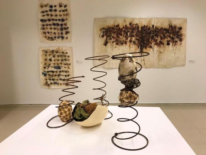 HerbArt: botànica i creació artística és la nova exposició al Centre Cultural El Carme de Badalona